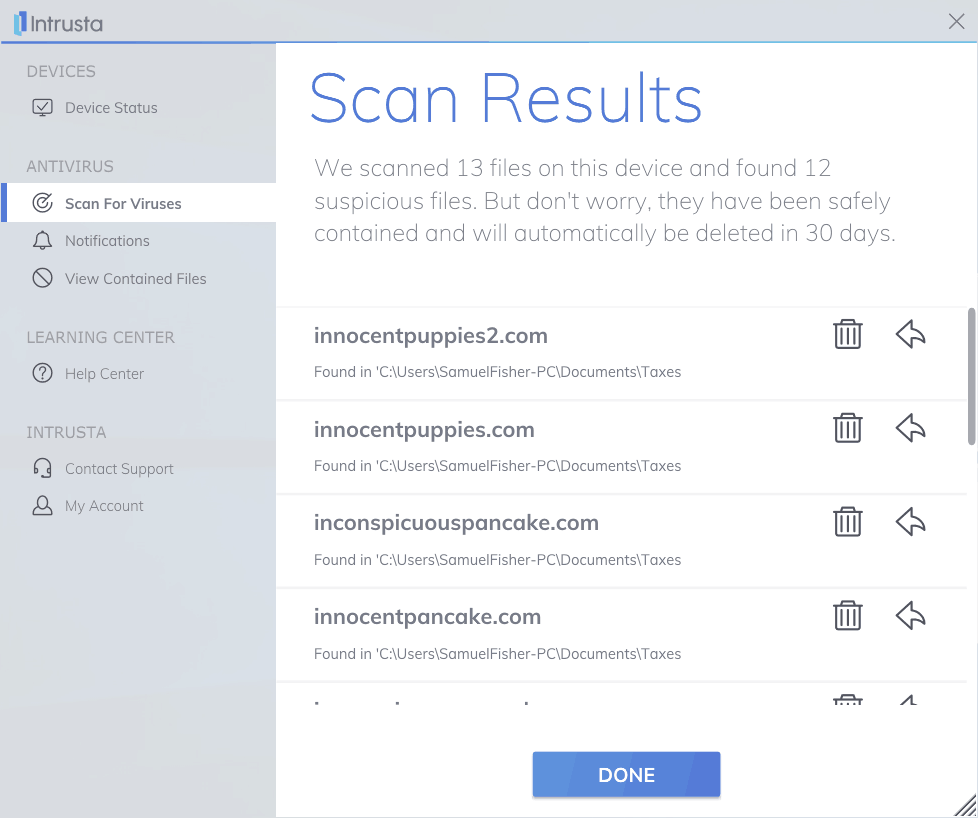 Image of Intrusta Antivirus Software scan results section